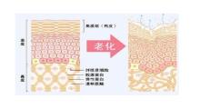 上海富华做吸脂多少钱?上海瘦身吸脂有没有副作用?...